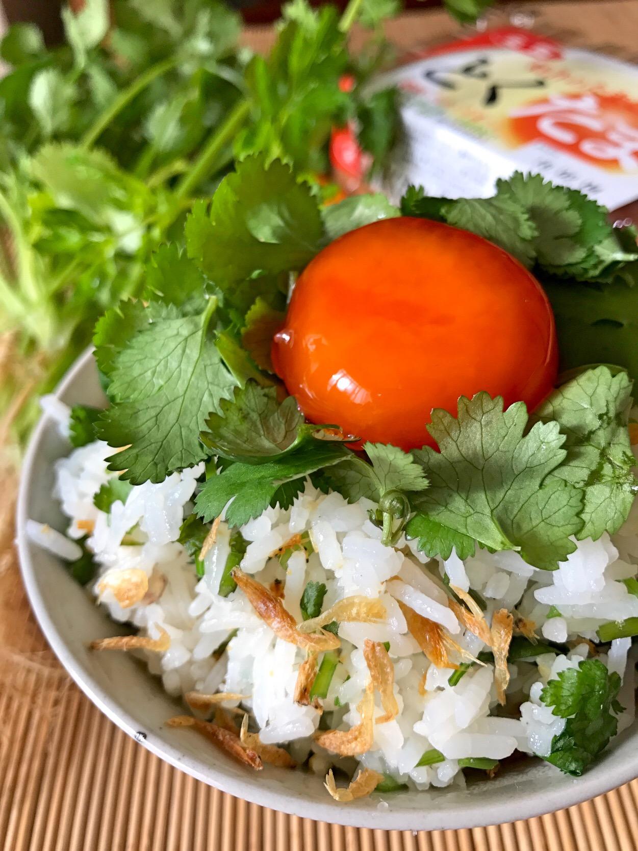 タイ風TKG??(パクチー菜飯、生たまご、黄身のナンプラー漬け)